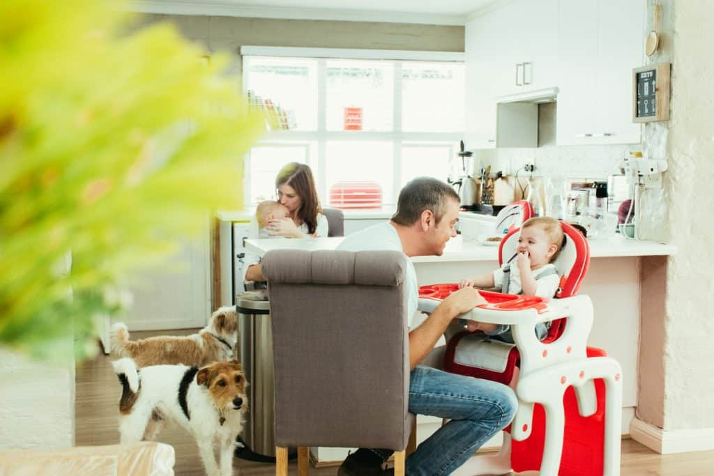 Family enjoying lunch in kitchen with dogs - lifestyle photography.