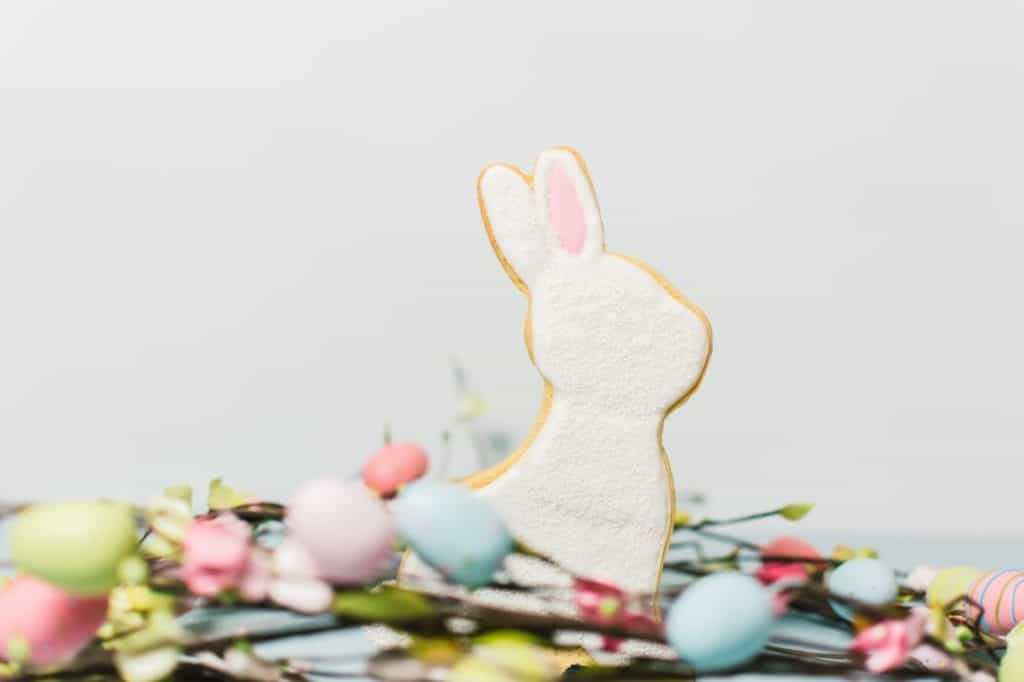 White Easter bunny cookie styled product photography.